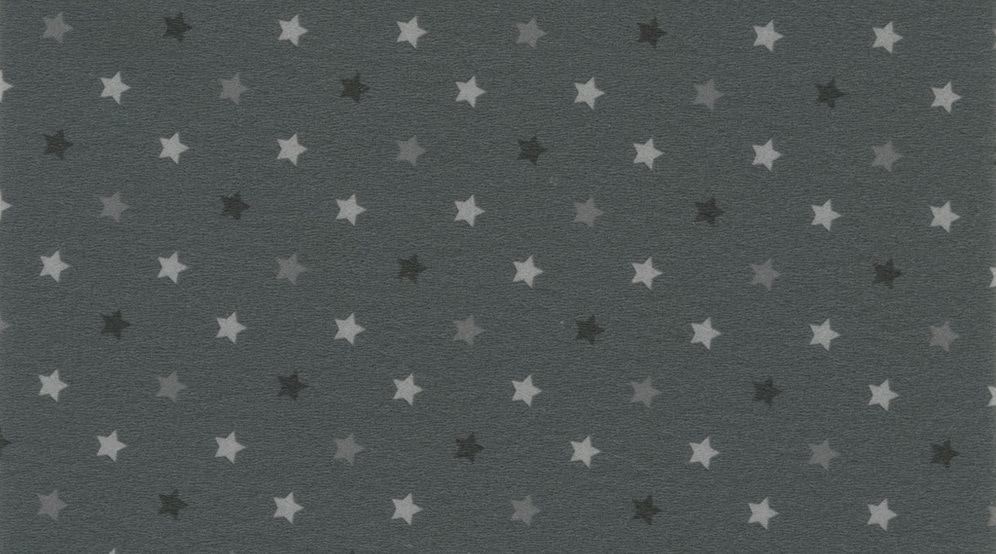 Линолеум Gerflor Taralay Impression Stars 0744 Anthracite
